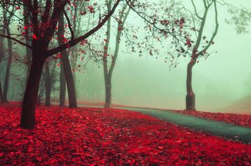 Panel Szklany PodświetlaneAutumn foggy alley - beautiful autumn landscape