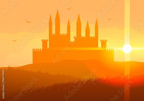 Staande foto India Vector illustration. Castle on the hills at sunset.