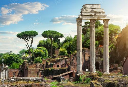 Obraz na plátně Roman Forum, Itálie