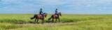 Fototapeta Horses - Panorama Ausritt in den Salzwiesen Nordsee