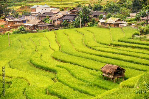 Foto auf Gartenposter Reisfelder beautiful landscape view of rice terraces and house