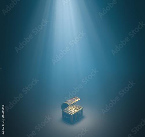 Fotografie, Obraz  Underwater treasure