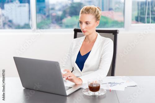 Fototapeta Businesswoman Working On Laptop obraz na płótnie
