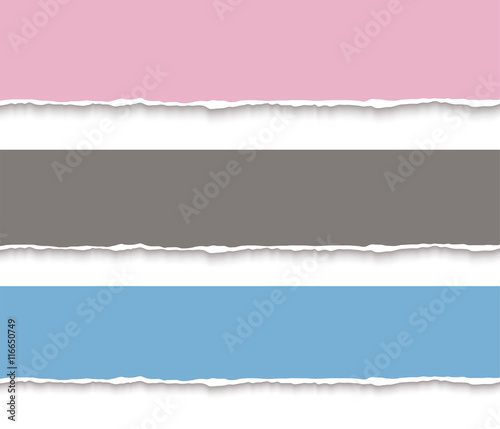 Torn paper blank banners  Design template for infographics