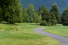 Wooded Golf Course With Cart P...