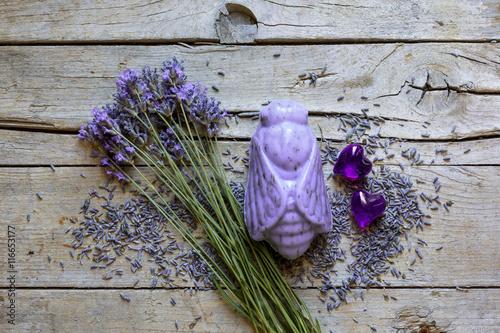 Tuinposter Lavendel Lavande, Lavandin et Produits de soins