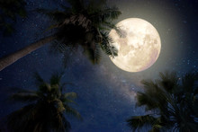 Beautiful Fantasy Of Palm Tree At Tropical Beach And Full Moon With Milky Way Star In Night Skies Background. Retro Style Artwork With Vintage Color Tone.