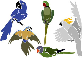 Set of Parrots Icons - Simple Colored Illustrations, Vector