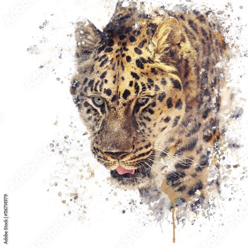 Foto  Portrait of Leopard watercolor
