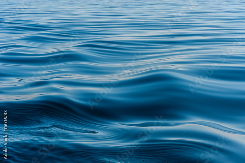 wave on the surface of the lake