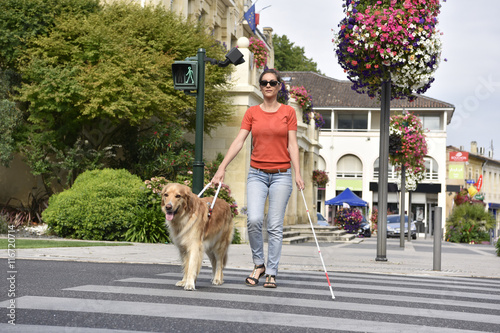Fotografia, Obraz Blind woman crossing the street with help of guide dog