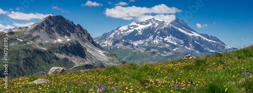 Fototapeta prairie de montagne en été obraz