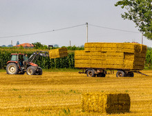 Tractor Loads Hay Bales On Trailer