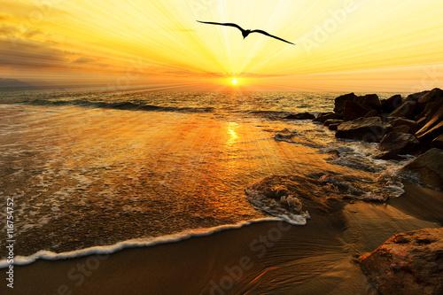 Obraz na płótnie Ocean Sunset Bird Silhouette