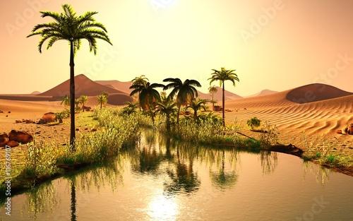 oasis 8-2