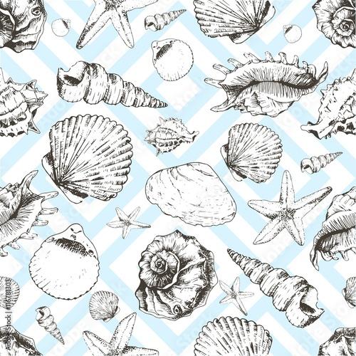 wektorowy-bezszwowy-wzor-seashels-odizolowywajacy-na-blawym-geometrycznym-modnym-tle