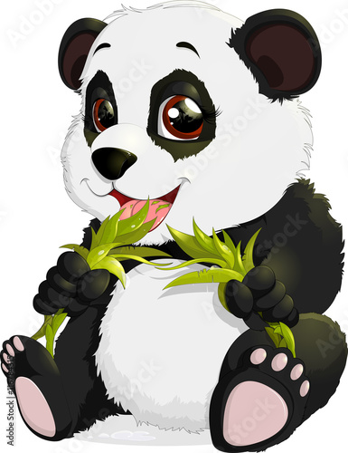bardzo-sliczna-panda-je-bambusa
