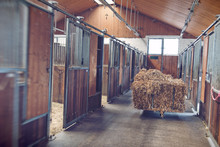 Bales Of Hay In A Stable Block