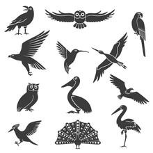 Stylized Birds Silhouettes Bla...