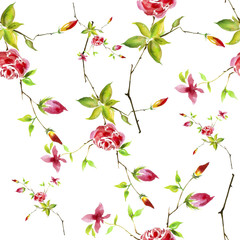 Fototapeta Vintage watercolor pattern - flowers, roses branch with buds, leaves. Seamless background.