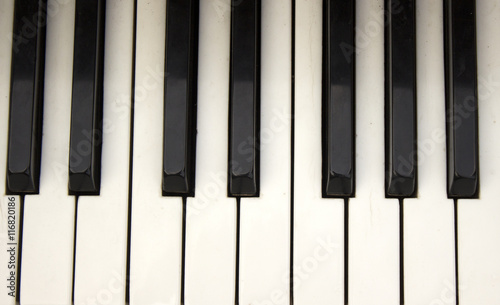 piano keyboard - 116820186