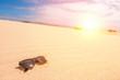 Sonnenbrille im Sand (urlaub)