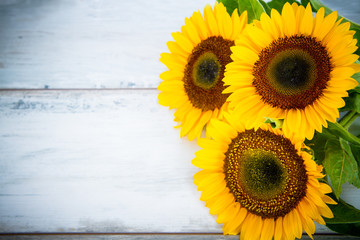 background with three sunflowers on wood