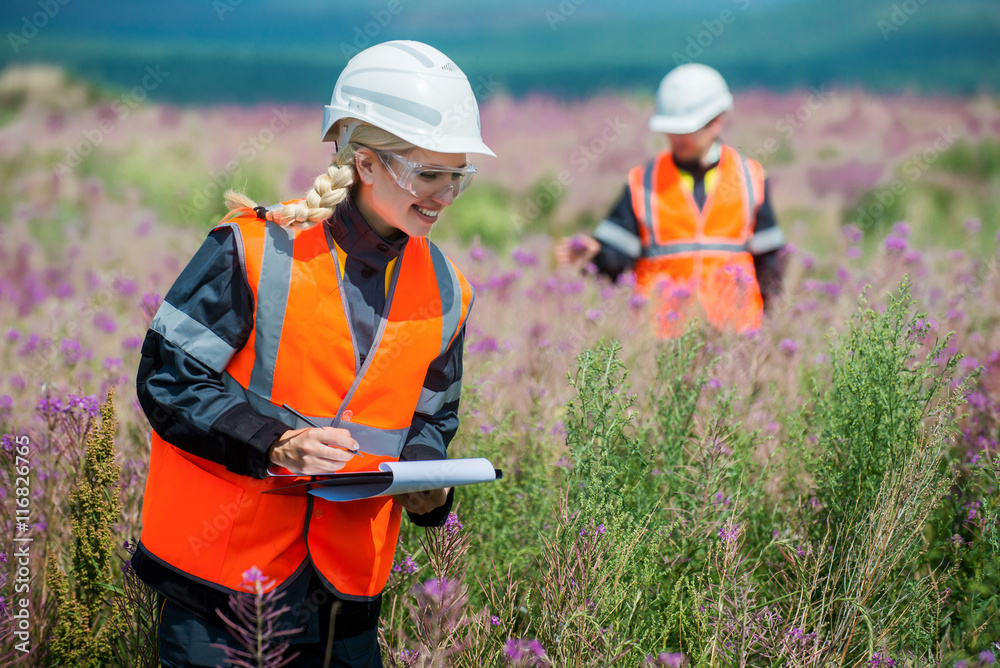 Fototapeta Researching recultivated field
