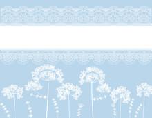 Queen Anne's Flower Lace Background Design