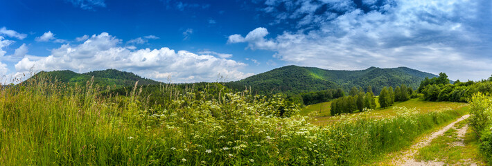 Landscape in Bieszczady Mountains