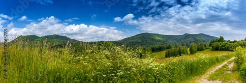 Krajobraz w Bieszczadach