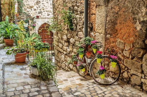 Obraz Wąska brukowana ulica z kwiatami w starej wiosce Tourrettes - fototapety do salonu