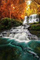 Fototapetabeautiful waterfall in green forest in jungle at phu tub berk mo