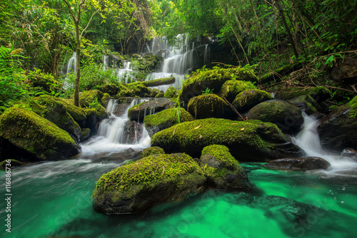 beautiful waterfall in green forest in jungle at phu tub berk mo