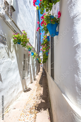 The popular Calleja de las Flores in Barrio de la Juderia, one of the most popular and tourist streets of Cordoba in Andalusia, Spain.