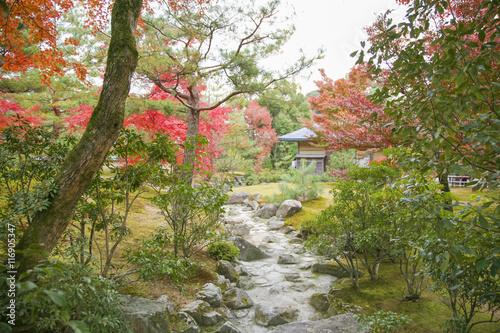 Foto op Canvas Zen Autumn in Japan