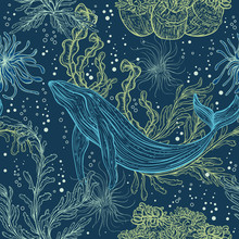 Seamless Pattern With Whale, Marine Plants And Seaweeds.Vintage Hand Drawn Marine Life. Vector Illustration
