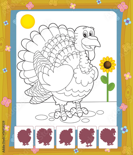 Spoed Foto op Canvas Doe het zelf Cartoon turkey - coloring page with shadow matching - isolated - illustration for the children