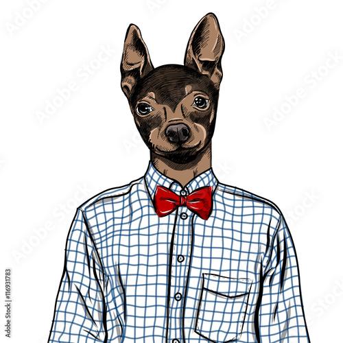 hand-drawn-fashion-illustration-wystrojony-w-gore-angielski-toy-terrier-w-kolorach-wektor
