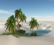 oasis in the desert. palm trees and sand.