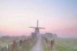 Dutch windmill in dense morning fog - 116961538