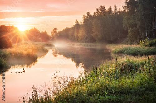 Fototapeta  Утро лета Morning of the summer