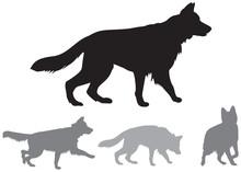 German Shepherd Dog Breeds Dynamic Vector Silhouettes