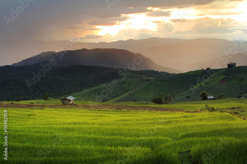 Fotobehang Rijstvelden Beautiful landscape with colorful, light and shadow during sunset of the rice terraces(paddy field) and mountains at Mae-Jam Village , Chaingmai Province in Thailand