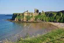 Beach And Priory Ruins In Tyne...