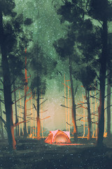 Fototapetacamping in forest at night with stars and fireflies,illustration,digital painting