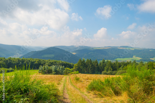 Fotografia  Hills of the Eifel National Park in summer