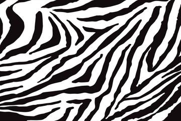 Fototapeta na wymiar Zebra Pattern Vector