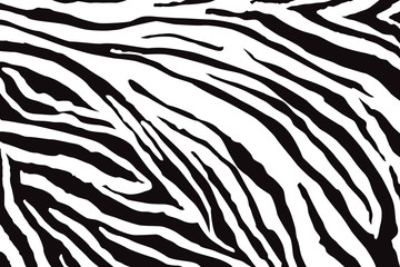 Obraz na Szkle Zebry Zebra Pattern Vector
