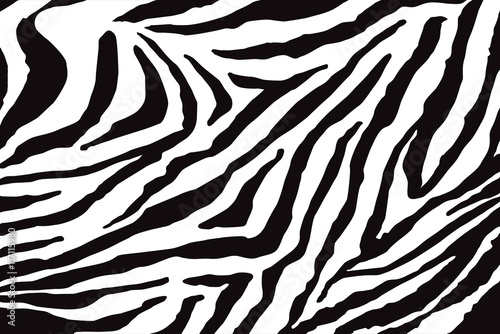 Zebra Pattern Vector - 117115980